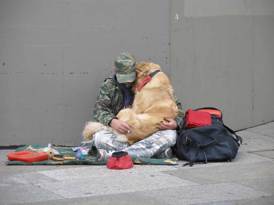 According to the National Coalition for Homeless Veterans, 'In addition to the complex set of factors influencing all homelessness – extreme shortage of affordable housing, livable income and access to health care – a large number of displaced and at-risk veterans live with lingering effects of post-traumatic stress disorder (PTSD) and substance abuse, which are compounded by a lack of family and social support networks.'